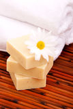 Spa towels and soap bars Stock Images