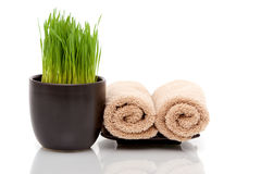 Spa towels and wheatgrass Stock Photos