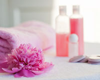 Spa tranquille still life Royalty Free Stock Photography