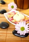 Spa Treatment. Stock Images