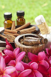 Spa treatment. Tropical spa treatment and aromatherapy royalty free stock image