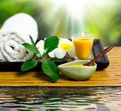 Spa treatment. Close up view of spa theme objects on natural background Royalty Free Stock Image