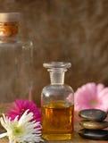 Spa treatment. Diffrent ingredient to spa treatment Stock Photos