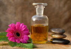 Spa treatment. Spa compositions of rocks and flowers and oil Stock Photo