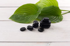 Spa treatment.Aromatherapy.Essential Oil. Spa treatment and aromatherapy concept background. Zen black marble stones, accessories for wellness beauty parlor Stock Images