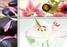 A spa treatment collage of three different images. With a green bottle, flowers and lava stones Royalty Free Stock Image