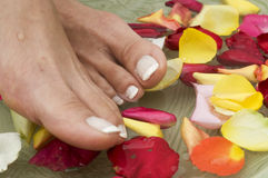 Spa treatment for feet Stock Images