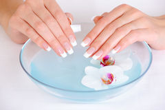 Spa treatment for female hands Royalty Free Stock Photos
