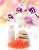 Spa treatment and flower Stock Photos
