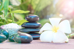 Spa treatment with Frangipani and black stones Stock Image