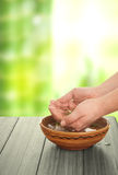 Spa Treatment In The Nature Stock Photography