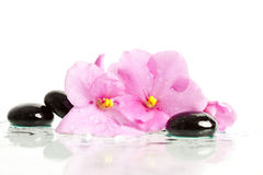 Spa treatment massage stones stock photos
