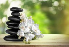 Spa treatment. Orchid stone zen-like flower single flower wellbeing royalty free stock photos