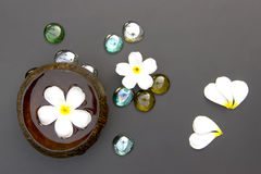 Spa treatment with Plumeria flower floating in coconut shell Stock Image