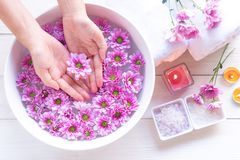 Spa treatment and product for female feet and manicure nails spa with pink flower for relax and healthy care. Therapy and Aroma for body women.  Healthy stock images
