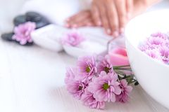 Spa treatment and product for female feet and manicure nails spa with pink flower and rock stone, royalty free stock images