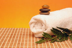 Spa treatment products Royalty Free Stock Photo