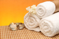 Spa treatment products Royalty Free Stock Image