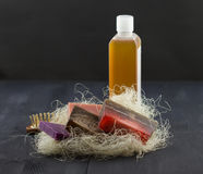 SPA treatment set Royalty Free Stock Photos