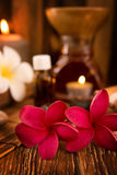 Spa treatment setting Royalty Free Stock Image