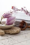 Spa treatment symbols with spring flowers Royalty Free Stock Photography