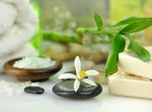 Spa treatments Royalty Free Stock Photos