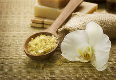 Spa Treatments. Sea Salt & Handmade Soap. Close-up Image Stock Photography