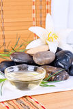 Spa treatments with oil Royalty Free Stock Image