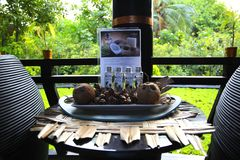 Spa in the tropical jungle for relaxation and enjoyment. Flacons with aroma oils for a relaxing massage. Spa salon. Set for massage Stock Photo