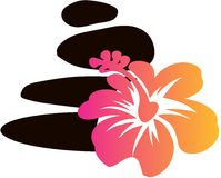 Spa vaggar och den Hawian blommavektorn Fotografering för Bildbyråer