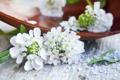 Spa vita blommor och salt brunnsorthav Arkivfoto
