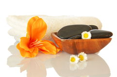 Spa and wellness. Spa zen and wellness still life isolated on white background Stock Images