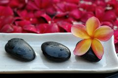 Spa and wellness. Tropical frangipani and therapy stones Royalty Free Stock Photos
