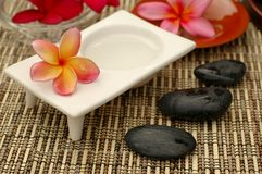 Spa and wellness Stock Photography