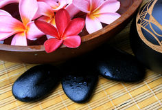 Spa and wellness. Frangipani flower with zen stone Stock Photography