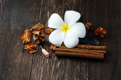 Spa and Wellness. Concept with cinnamon Stock Images