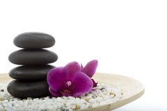 Spa and wellness. On the white Stock Photos