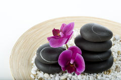 Spa and wellness. On the white Stock Photo