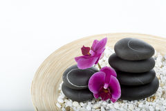 Spa and wellness. On the white Stock Image