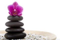 Spa and wellness. On the white Royalty Free Stock Photography