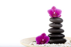 Spa and wellness. On the white Royalty Free Stock Photos