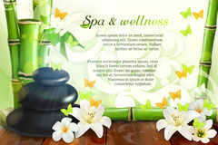 Spa and wellness background royalty free illustration
