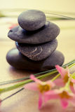 Spa wellness and beauty. A shot of black stones and pink flower to depict wellness and beauty Stock Photography
