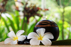 Spa and wellness concept. With white Tropical Frangipani