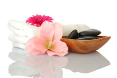 Spa and wellness concept Royalty Free Stock Images
