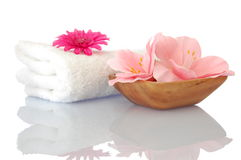 Spa and wellness concept Stock Photography