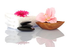 Spa and wellness concept Stock Image