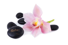Spa and Wellness Concept Stock Images
