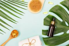 Tropical leaves, essential oil, fish oil capsules royalty free stock photos