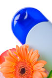 Spa and wellness details. / aroma Stock Image